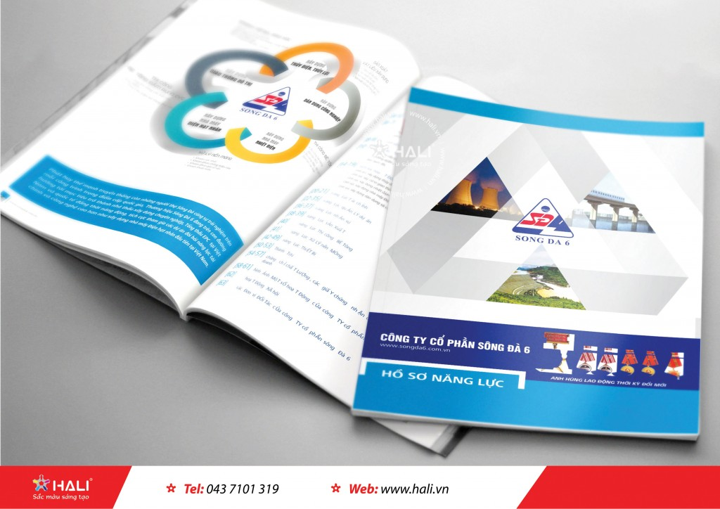 Thiết kế profile Công ty cổ phần Sông Đà 6