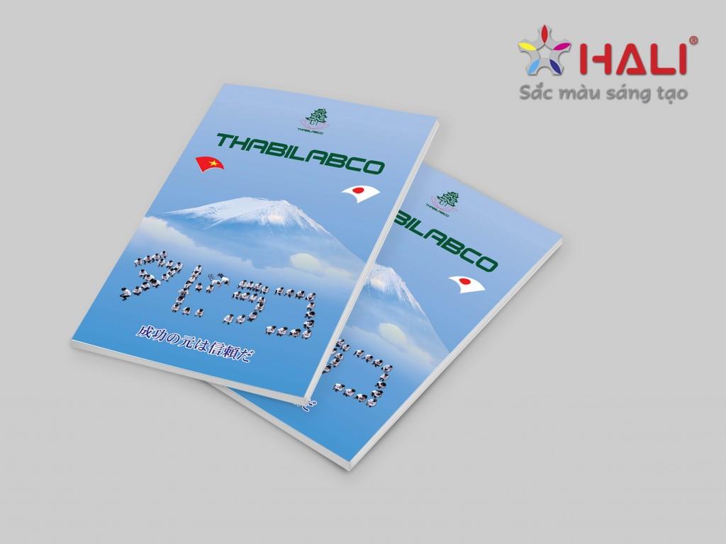 Thiết kế Brochure Công ty Thaibilabco