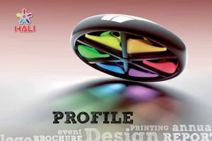 Hồ sơ năng lực thiết kế