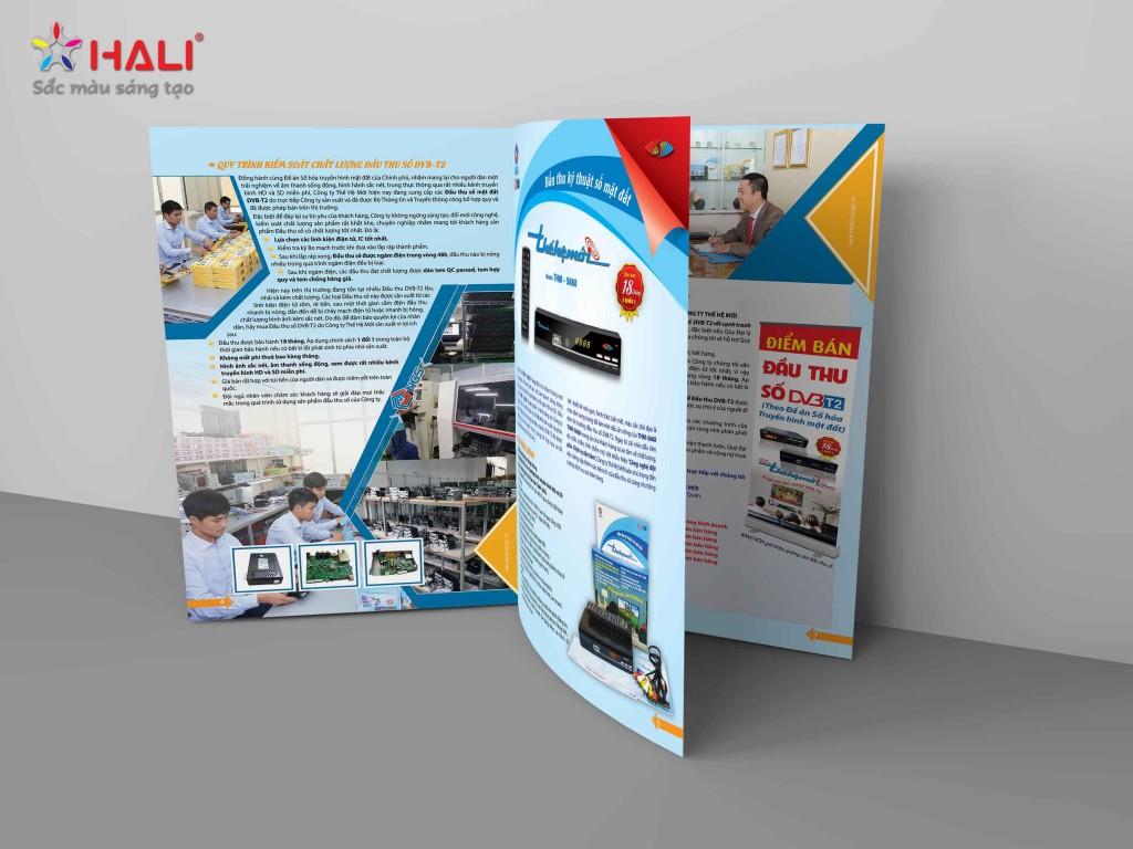 Thiết kế Brochure Công ty Thế Hệ Mới