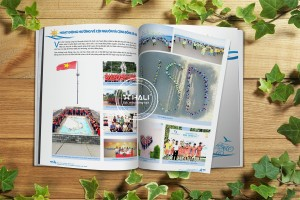 Báo cáo thường niên VSD-08