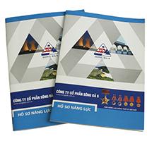 Các dự án thiết kế Profile, Catalogue, Brochure HALI đã thực hiện