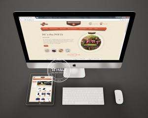 thiet-ke-website-dtekco
