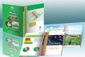 Thiết kế Báo cáo thường niên