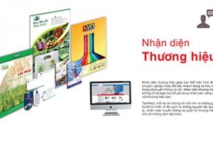Hệ thống nhận diện thương hiệu thiết kế HALI