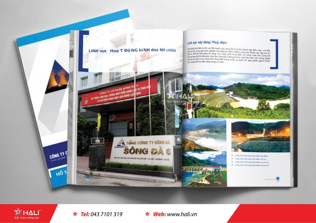 Thiết kế profile Tổng công ty Sông Đà 6