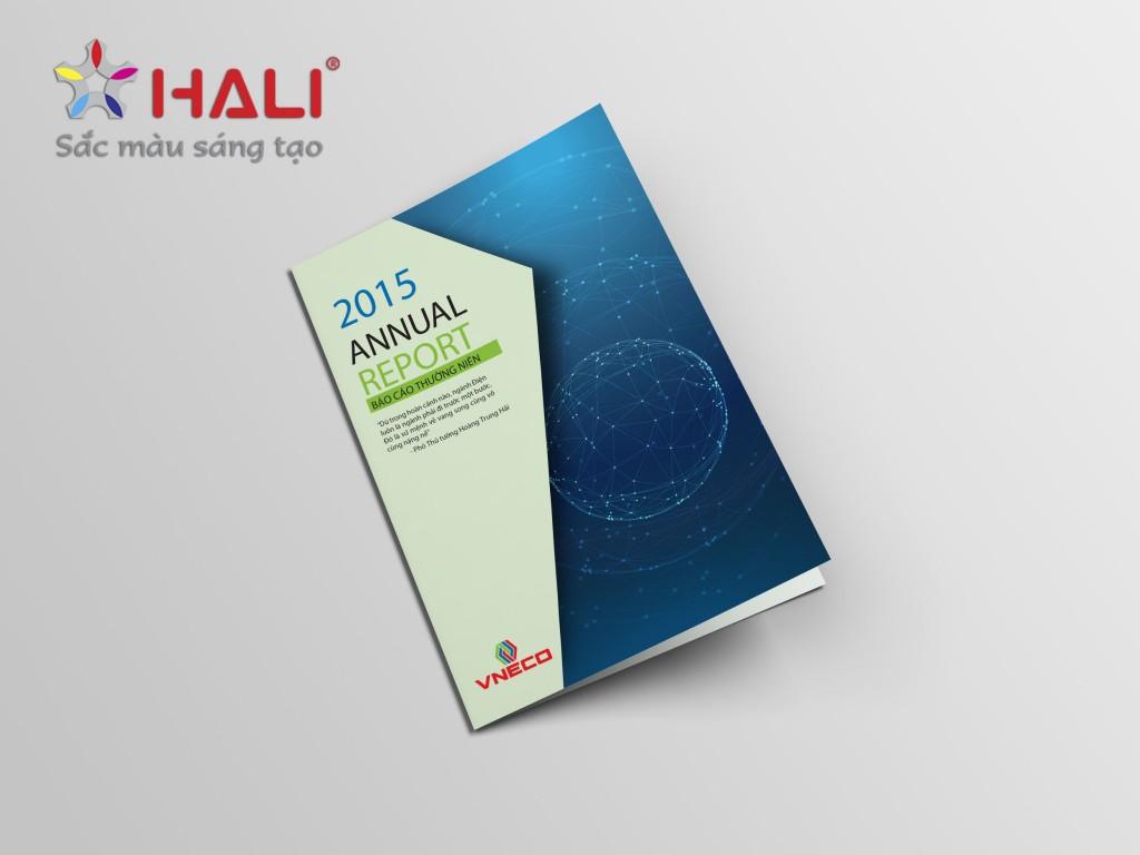 Thiết kế Báo cáo thường niên VNECO