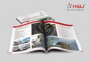 Thiết kế Profile Công ty TNHH HLC Đầu tư và thương mại