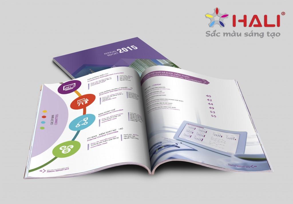Thiết kế Báo cáo thường niên VINARE 2015