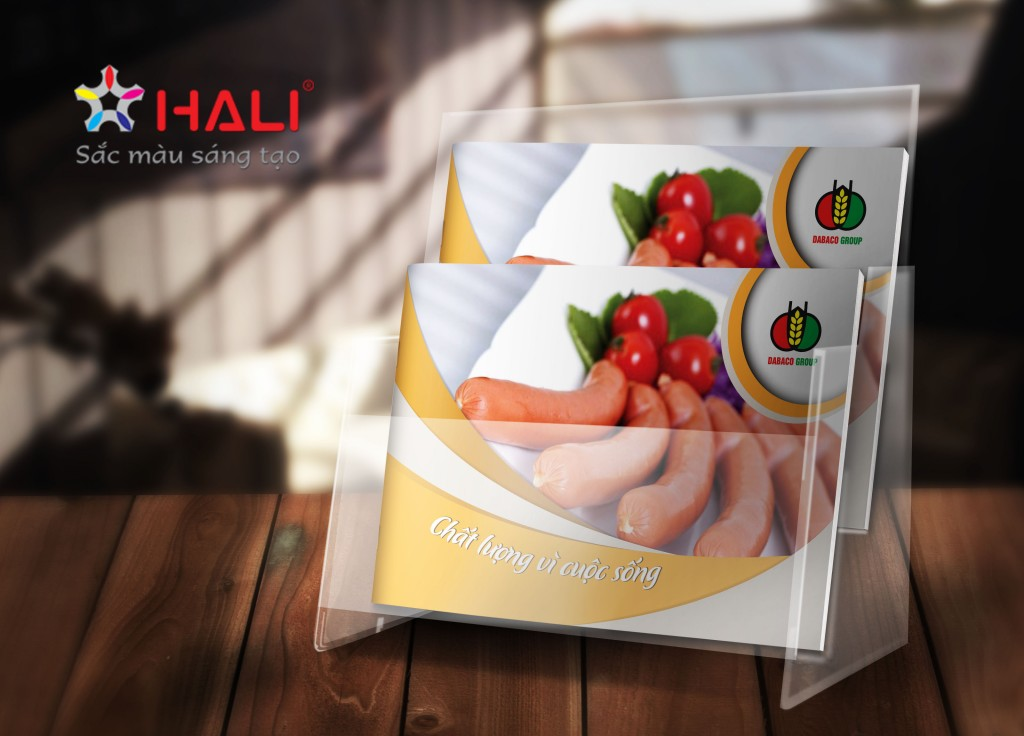Thiết kế Profile Công ty TNHH Chế biến thực phẩm DABACO