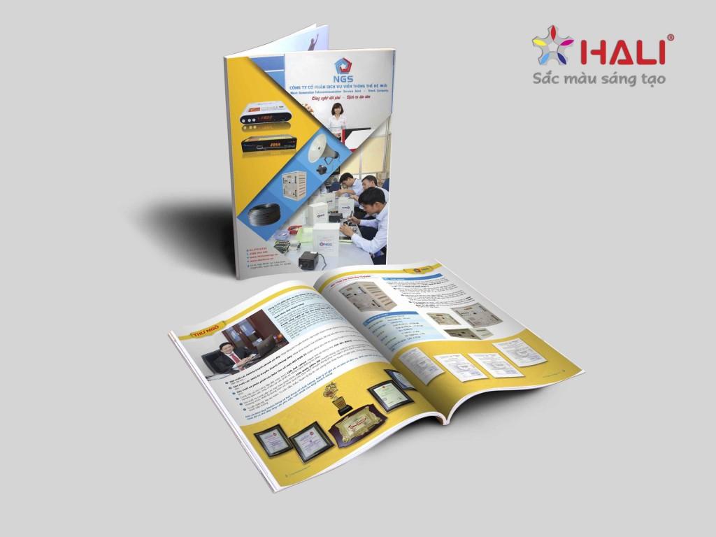thiết kế profile công ty-2