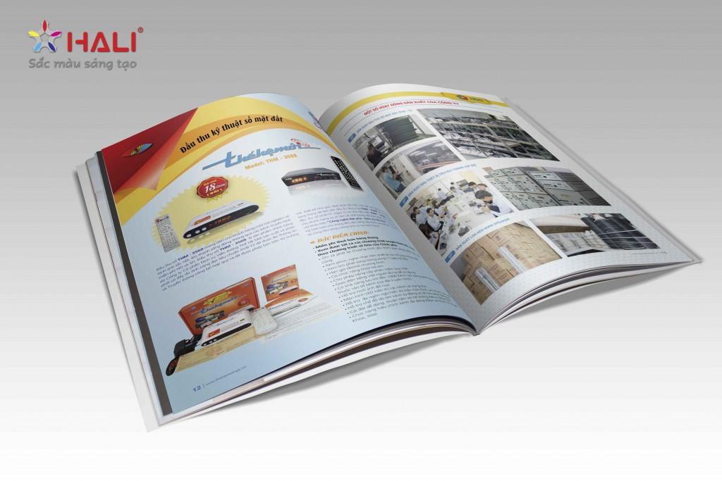 Mẫu thiết kế profile công ty - 4