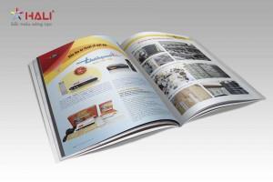 Mẫu thiết kế profile công ty Thế Hệ Mới 4