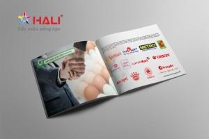 Thiết kế Profile Công ty TNHH Đầu tư và phát triển chăn nuôi gia công