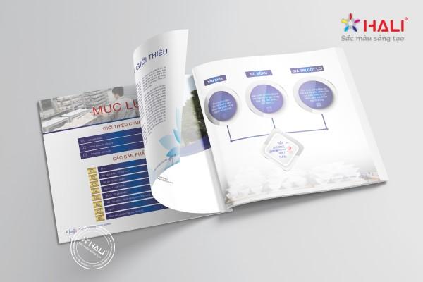 Mẫu thiết kế catalogue tại Hali.