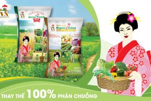 Thiết kế Bộ nhận diện thương hiệu Việt Nhật