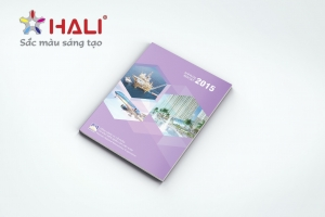 Mẫu báo cáo thường niên TCT CP Tái bảo hiểm quốc gia Việt Nam