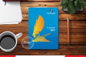 Mẫu báo cáo thường niên 2017 Ngân hàng VSD