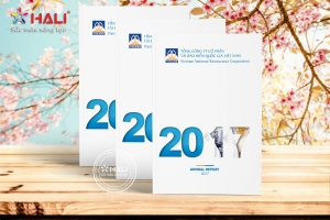 Yêu cầu về báo cáo thường niên 2018 thiết kế HALI