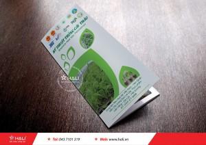 Thiết kế brochure Công ty Rau sạch