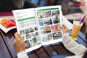 Thiết kế profile cho doanh nghiệp dịch vụ