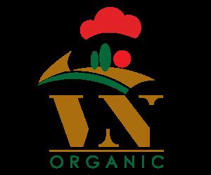 Thiết kế logo Việt Nhật