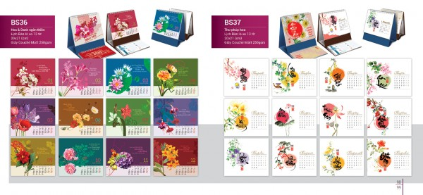 bsm-catalogue-2020_page_51
