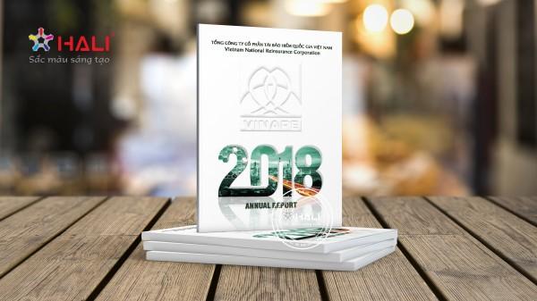 Mẫu báo cáo thường niên 2018 VINARE.