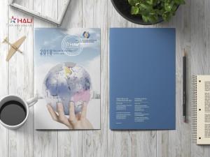 Mẫu thiết kế báo cáo thường niên VSD 2018.