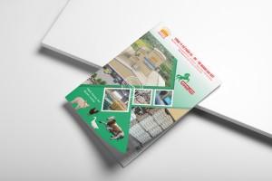 Thiết kế brochure Hoàng Gia Việt